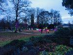 Зимни светлини в Палмовата градина на Франкфурт