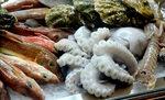 """Хванете """"Ей такава риба"""" на Бакхус Fish Fest 2 - 19 и 20 октомври"""