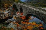 Читателска фотогалерия: Родопски есенни багри