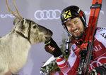 Фотогалерия: Да празнуваш победа с Дядо Коледа и неговите северни елени