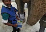 Фотогалерия: Първата болница за слонове в Индия