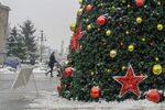 Снимка на деня: Елха, дарение от Москва, украси центъра на София