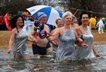 """Фотогалерия: Карнавалното къпане на """"Берлинските тюлени"""""""