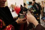Фотогалерия: Мода за най-добрите приятели на нюйоркчани
