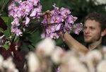 Фотогалерия: Орхидеи от Колумбия