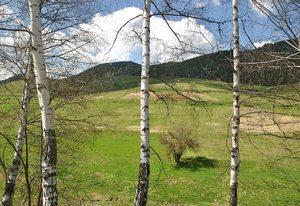 Фотогалерия: Пролет в Родопите