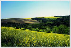 Фотогалерия: Когато пролетта започва