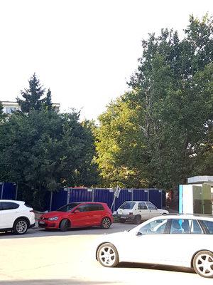 """Окастряне на дървета до строителна площадка в кв. """"Чайка"""", Варна"""