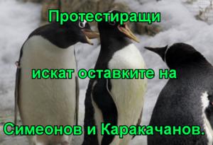 Протестиращи искат оставките на Симеонов и Каракачанов.