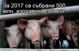 За 2017 са събрани 500 млн, изплатени 200млн.