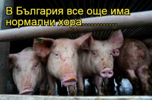 В България все още има нормални хора............
