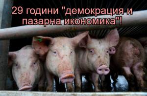 """29 години """"демокрация и пазарна икономика""""!"""