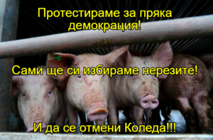 Протестираме за пряка демокрация! Сами ще си избираме нерезите! И да се отмени Коледа!!!