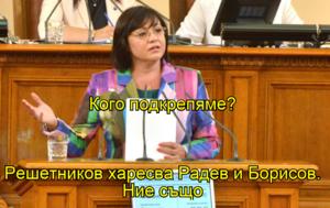 Кого подкрепяме? Решетников харесва Радев и Борисов. Ние също