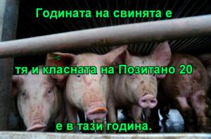Годината на свинята е тя и класната на Позитано 20 е в тази година.