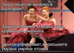 Защо нищо не е наред в България? Защото свинете станаха хора, кравите се омъжиха, овните управляват,а кокошките умряха умряха отсмях