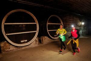 Фотогалерия: Състезание из най-дългата подземна изба в света