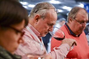 Пет маршрута из света на виното