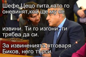 Шефе,Цецо пита,като го оневинят,кой ще му се  извини. Ти го изгони, ти трябва да си. За извиненията отговаря Биков, него търси.