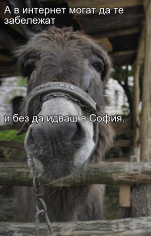 А в интернет могат да те забележат  и без да идваш в София.
