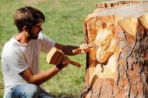Римски скултор превръща умрели дървета в произведения на изкуството