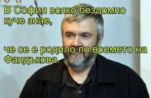 В София всяко бездомно куче знае, че се е родило по времето на Фандъкова.