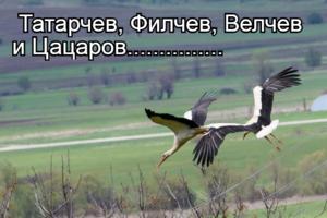 Татарчев, Филчев, Велчев и Цацаров...............