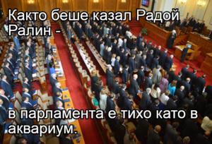 Както беше казал Радой Ралин -   в парламента е тихо като в аквариум.