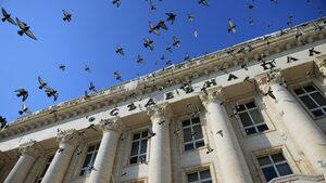 Съдиите в Софийския апелативен съд ще обсъждат дали там има корупция