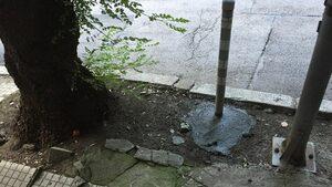 Ремонт на тротоарни колчета - шедьовър в центъра нa eвропейска столица