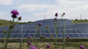 Зелената енергия, а не АЕЦ, ще реши проблема с енергийната бедност, сочи анализ