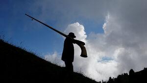 Фотогалерия: Фестивалът на алпийския рог