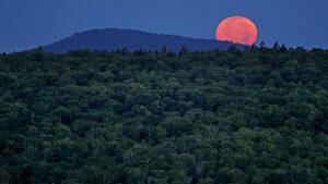 Отдихът на Луната ще е активен, скъп и пълен с красиви гледки