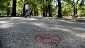 Алеите в столичен парк са разделени на такива за кучета и на такива за деца
