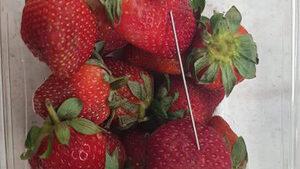 Австралия ще увеличи присъдите за увреда на храни заради иглите в пакети ягоди