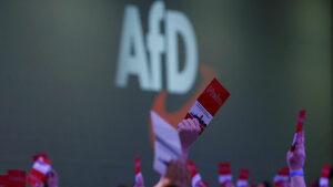"""""""Алтернатива за Германия"""" е втора по одобрение политическа сила, показа проучване"""