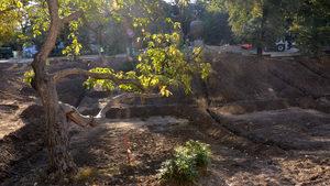 """Дупката на градината """"Кристал"""" не се зарива, а се подменя почвеният слой, каза кметът на София"""