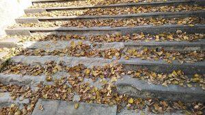 Опасно стълбище на подлез