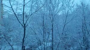 Първи сняг