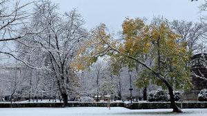 Мотивирането на служителите през зимата