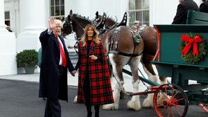 Снимка на деня: Семейство Тръмп посрещна коледната елха