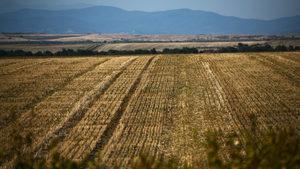 Продукцията в селското стопанство намалява през 2018 г.