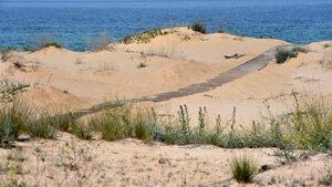 Министерството на туризма проверява сигнал за строеж върху дюни