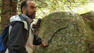 """Тома Белев: Промените в Закона за биоразнообразието изключват заинтересованите от решенията за """"Натура"""""""