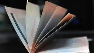 С критики към България Брюксел ще обяви първите си препоръки за продажбата на паспорти в ЕС