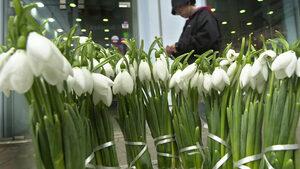 Март с температури и валежи в нормите, прогнозират синоптиците