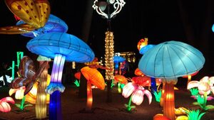 Идва краят на фестивала на на светлината на Калемегдан