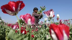 Афганистанският хероин тръгва по нови пътища