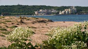 Предлагани глоби за плажуване върху дюни сблъскаха отново природозащитници и управляващи