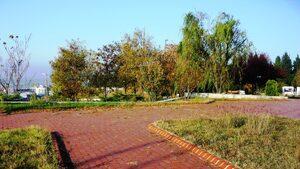 Одринската крепост